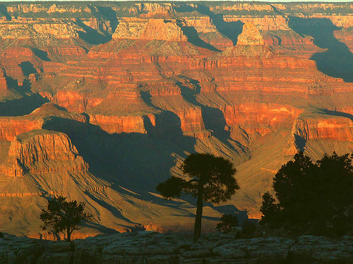 grand canyon pic.jpg